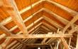 ENERGETSKA PRENOVA OBJEKTA – ZMAJSKI MOST – LJUBLJANA – Pregled stropne in strešne konstrukcije